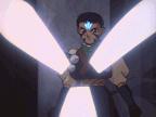 Wings Of The Light Hawk