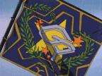Galaxy Police Flag